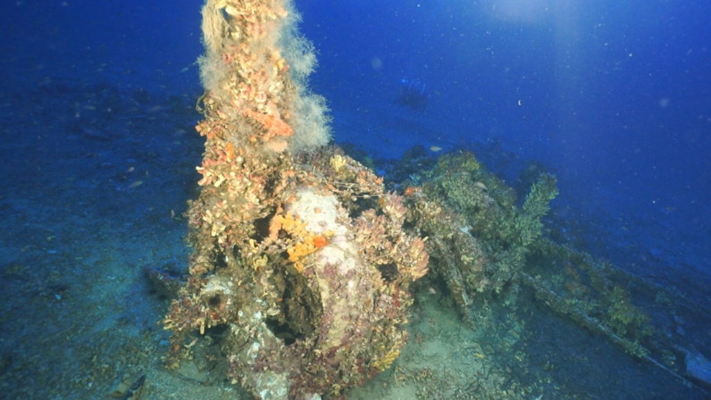Remains of the World War II-era Fairey Swordfish discovered off the coast of Malta.