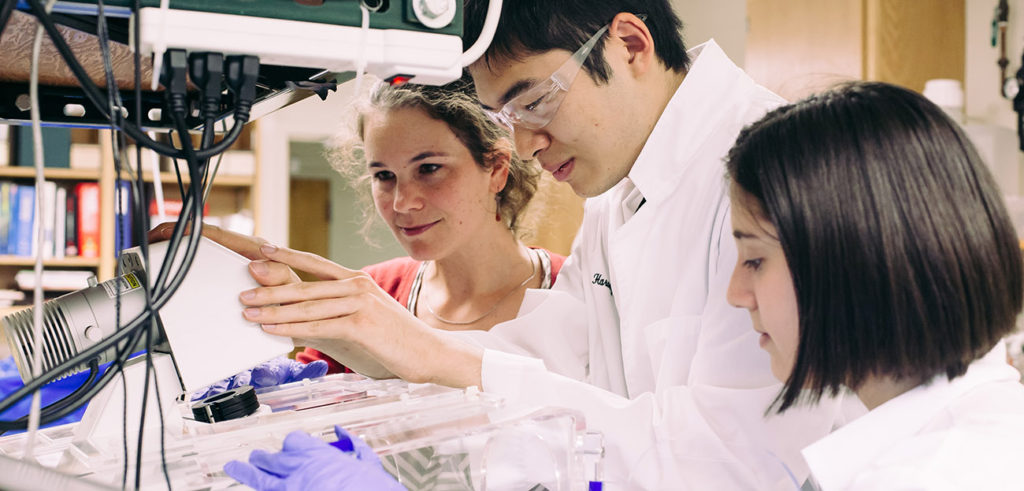 Students in Gerbode physics lab