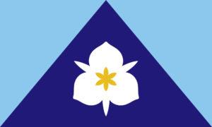 SLC flag design by Meinking