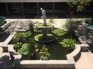 All liberal arts institutions need fountains, right?
