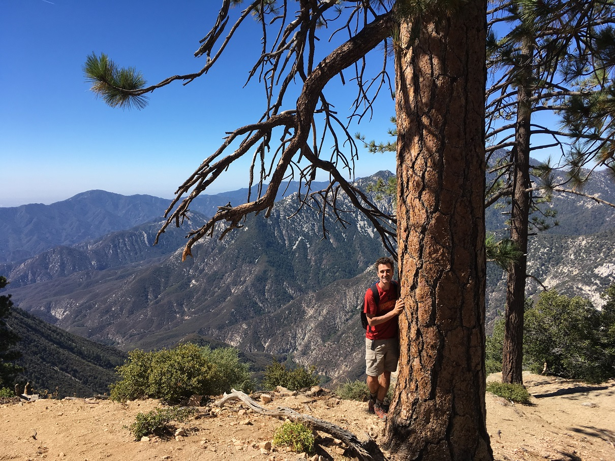 Professor Zorman behind a large pine tree during a hike in the San Gabriel mountains