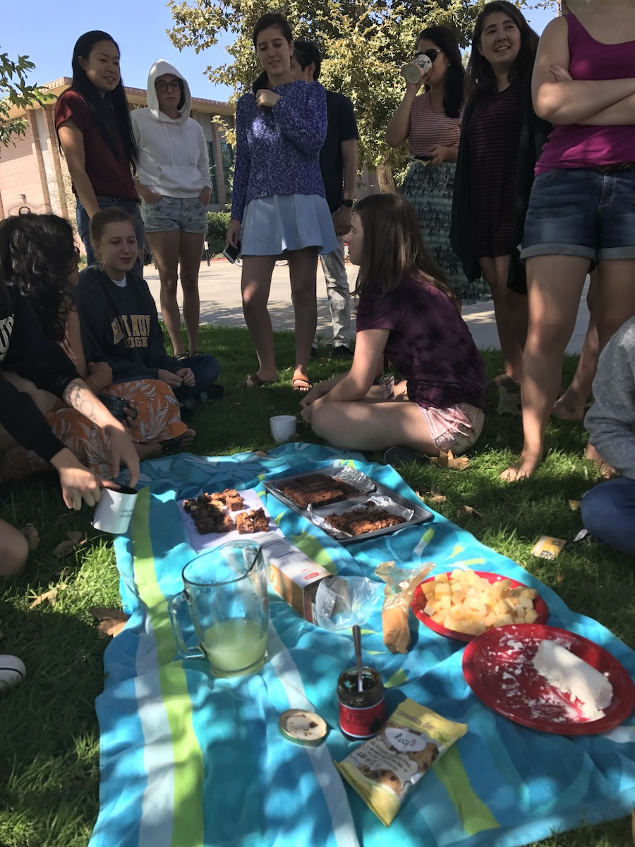 Students eating brownies and cheese on the grass