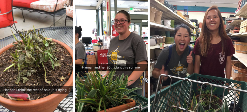 "Left: A pot containing a shriveled plant sits on a table Middle: A smiling girl stands next to a shopping cart containing plants. The photo is captioned ""Hannah and her 20th plant this summer"" Right: One girl smiles and gives a thumbs up to the camera while another girl smiles but looks concernedly at a shopping cart with plants in it"