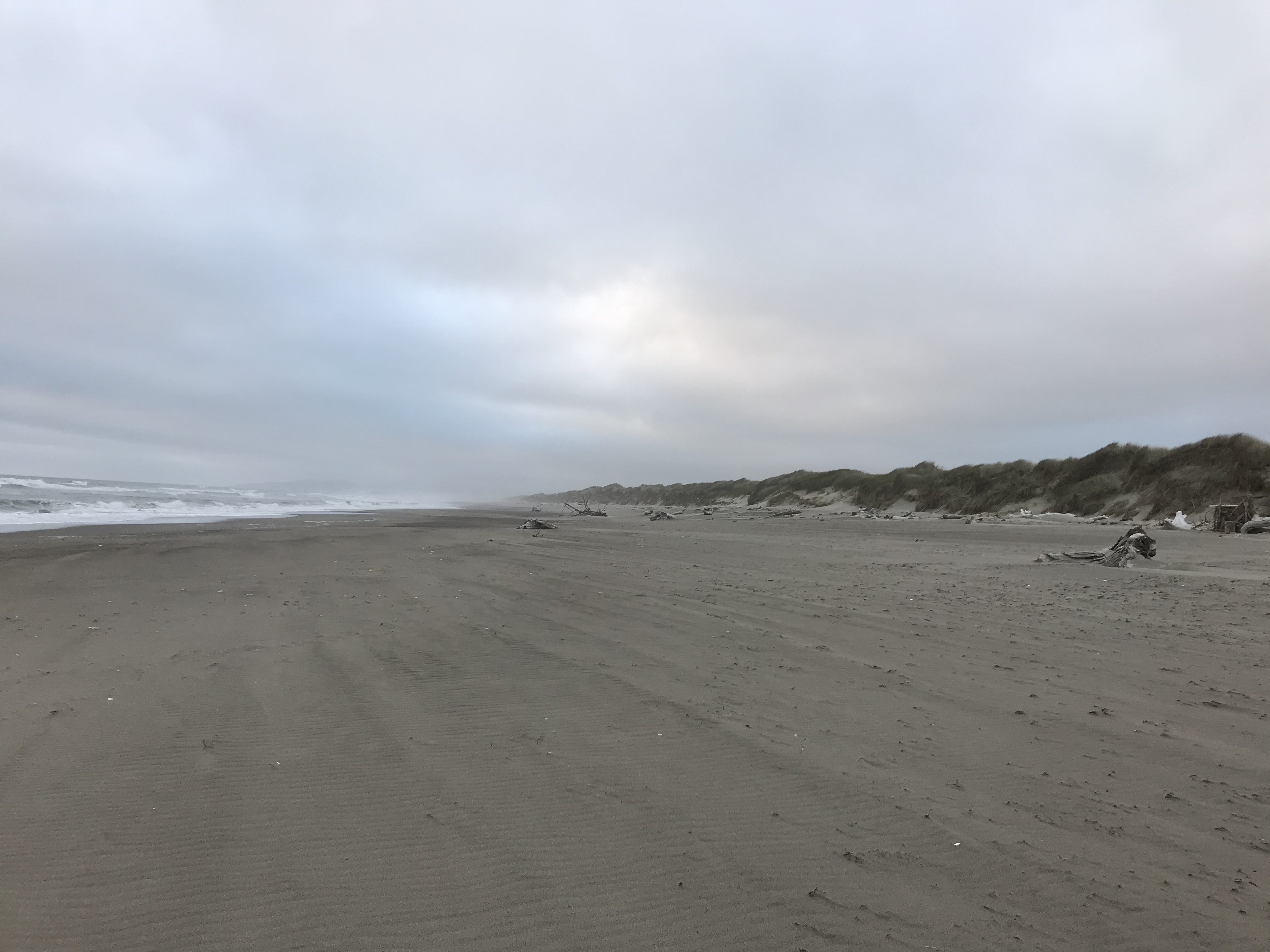 The empty coast in Oregon; the sky is gray and cloudy, and the beach is very clean and empty.