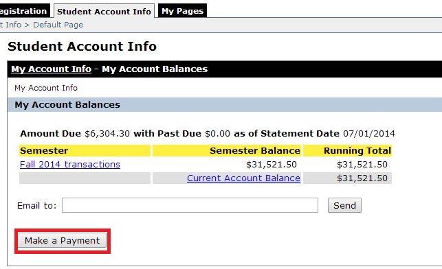 Click Make a Payment.