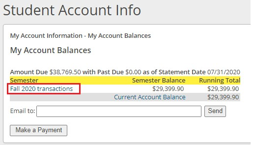 Step 7 - Select a semester to view individual transactions