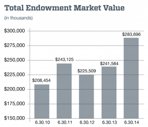 Total endowment market value