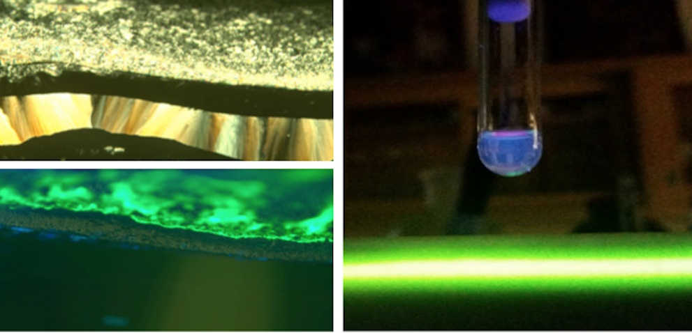 Comparing Fluorescence of Quantum Dots to Prodan
