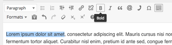 WordPress bold step 1