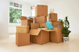 Move-Out Boxes