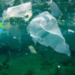 Plastics pollution in the ocean