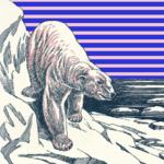 Polar bear descends on ice amid background of American flag - artwork by Morgan McMullen