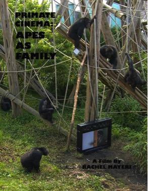 primate-cinema