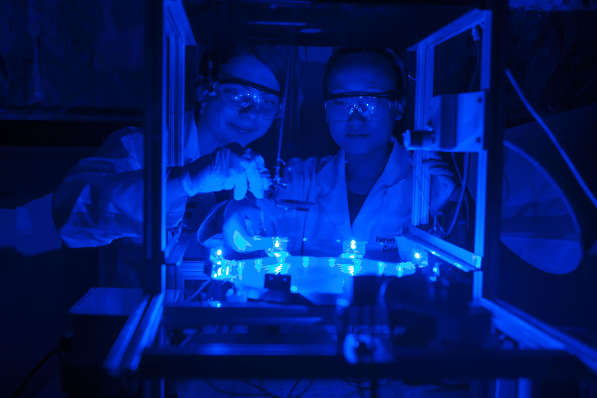 Students work in a lab lit by ultra violet.