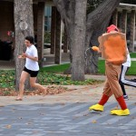 Students are chased by another in a turkey costume.