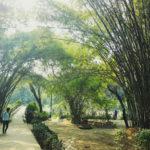 Lodi Gardens, Delhi.